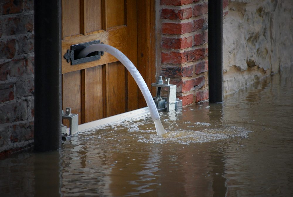 7 Things to Look for in a Water Damage Repair Company